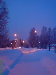 Vinterskymning